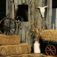 Country Themed Party Decorations